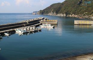 高よしパークホテルの裏の漁港